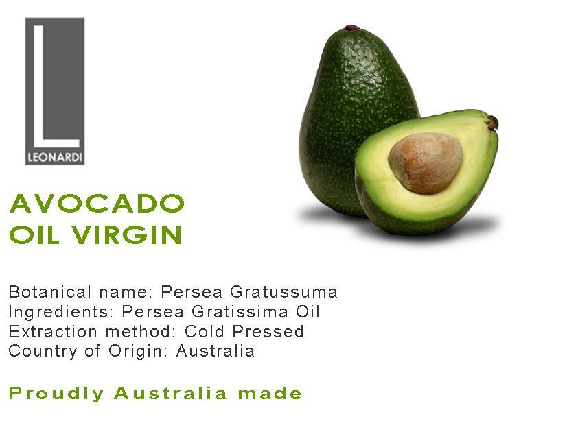 origin of avocado