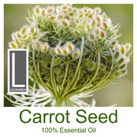 CARROT SEED CERTIFIED ORGANIC 100% PURE ESSENTIAL OIL  Aromatherapy. 50ml