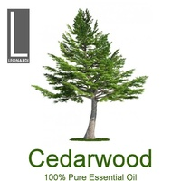 Cedarwood Atlas 100% Pure Essential Oil 10ml