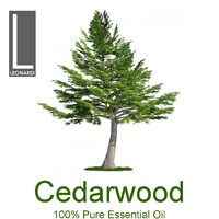 CEDARWOOD ATLAS 1 LITRE PURE ESSENTIAL OIL AROMATHERAPY GRADE