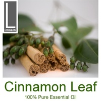 CINNAMON LEAF 10 ML PURE ESSENTIAL OIL AROMATHERAPY GRADE
