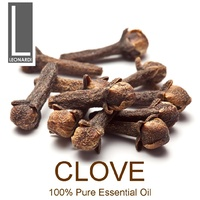 CLOVE BUD 100 ML PURE ESSENTIAL OIL AROMATHERAPY GRADE