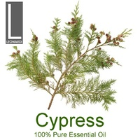 CYPRESS 100% PURE ESSENTIAL OIL 50ML