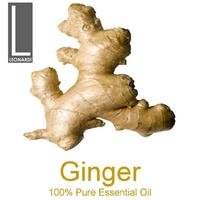 GINGER 10 ML PURE ESSENTIAL OIL AROMATHERAPY GRADE
