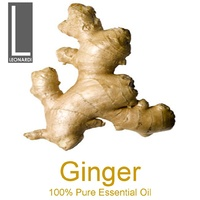 GINGER 100% PURE ESSENTIAL OIL 50ML
