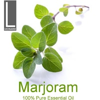 MARJORAM 100 ML PURE ESSENTIAL OIL AROMATHERAPY GRADE