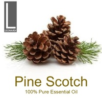 PINE SCOTCH 100 ML PURE ESSENTIAL OIL AROMATHERAPY GRADE