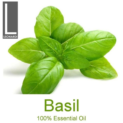BASIL 10 ML PURE ESSENTIAL OIL  AROMATHERAPY GRADE