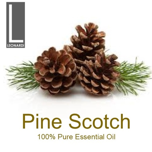 PINE SCOTCH 50 ML PURE ESSENTIAL OIL AROMATHERAPY GRADE